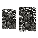 Forest Shadow Texture Mesh - 2 Pack